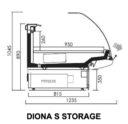 Diona Storage